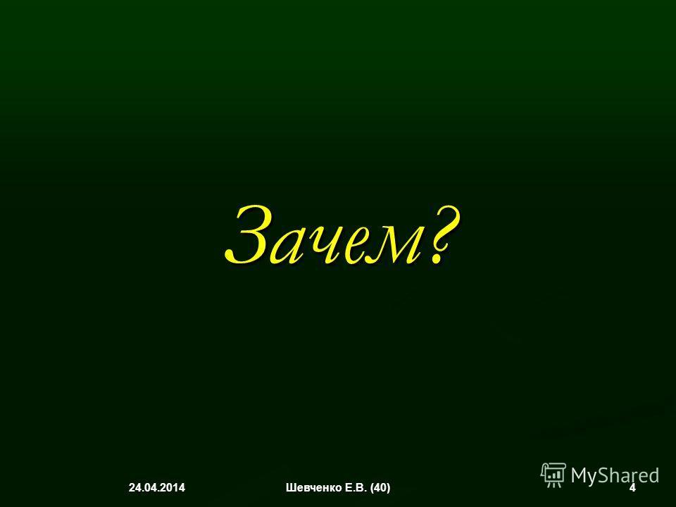 Зачем? 24.04.2014 4Шевченко Е.В. (40)