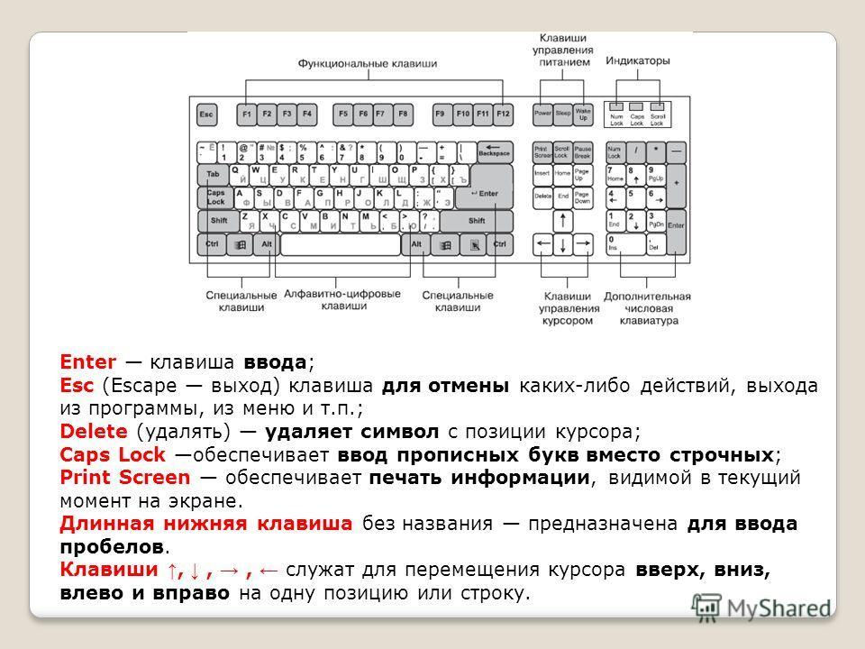 Enter клавиша ввода; Esc (Escape выход) клавиша для отмены каких-либо действий, выхода из программы, из меню и т.п.; Delete (удалять) удаляет символ с позиции курсора; Caps Lock обеспечивает ввод прописных букв вместо строчных; Print Screen обеспечив