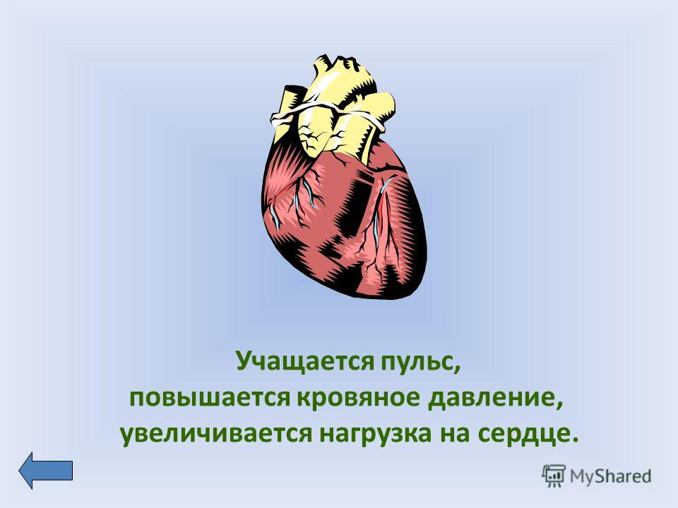 Учащается пульс, повышается кровяное давление, увеличивается нагрузка на сердце.