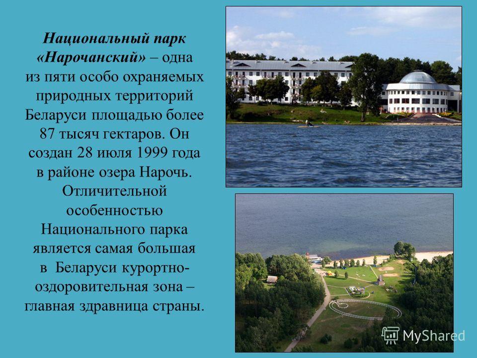 Березинский биосферный заповедник – островок нетронутой природы, уникальное природное наследие Беларуси и Европы. Он был создан еще в 1925 году с целью сохранения типичных и уникальных природно-ландшафтных комплексов. Сегодня Березинский заповедник –
