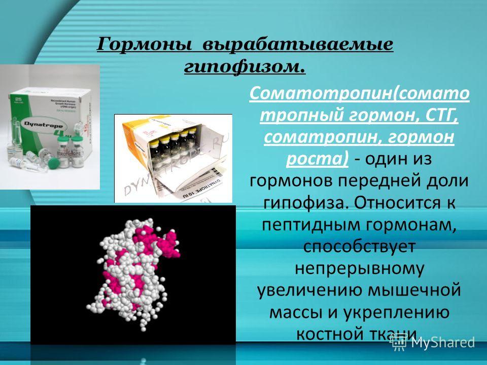 Гормоны вырабатываемые гипофизом. Соматотропин(сомато тропный гормон, СТГ, соматропин, гормон роста) - один из гормонов передней доли гипофиза. Относится к пептидным гормонам, способствует непрерывному увеличению мышечной массы и укреплению костной т