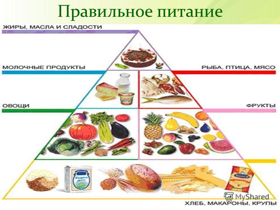 что входит в здоровый образ жизни
