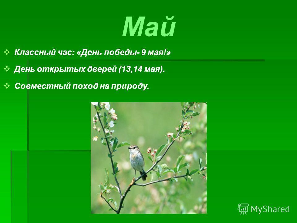 Май Классный час: «День победы- 9 мая!» День открытых дверей (13,14 мая). Совместный поход на природу.