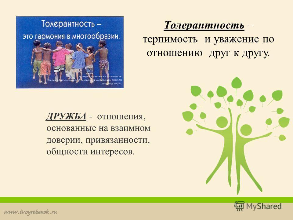 ДРУЖБА - отношения, основанные на взаимном доверии, привязанности, общности интересов. Толерантность – терпимость и уважение по отношению друг к другу.