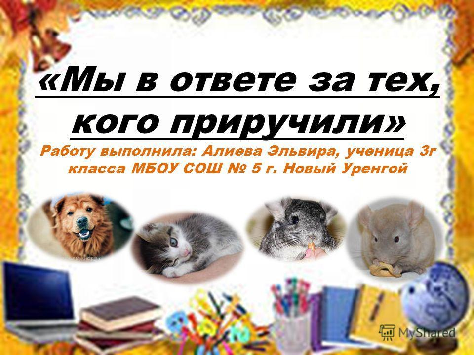«Мы в ответе за тех, кого приручили» Работу выполнила: Алиева Эльвира, ученица 3г класса МБОУ СОШ 5 г. Новый Уренгой