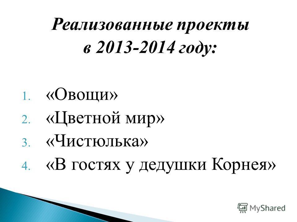 Реализованные проекты в 2013-2014 году: 1. «Овощи» 2. «Цветной мир» 3. «Чистюлька» 4. «В гостях у дедушки Корнея»