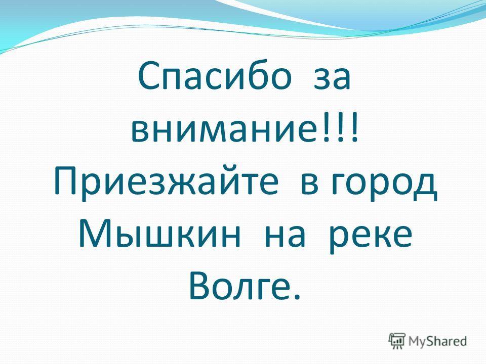 Спасибо за внимание!!! Приезжайте в город Мышкин на реке Волге.