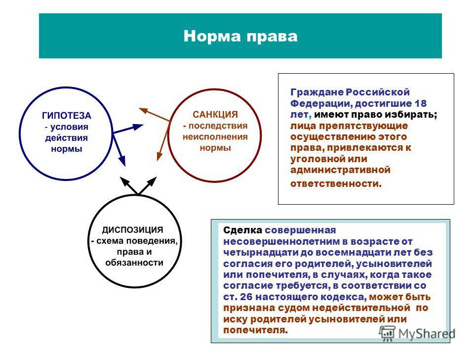 Норма права Граждане Российской Федерации, достигшие 18 лет, имеют право избирать; лица препятствующие осуществлению этого права, привлекаются к уголовной или административной ответственности. Сделка совершенная несовершеннолетним в возрасте от четыр