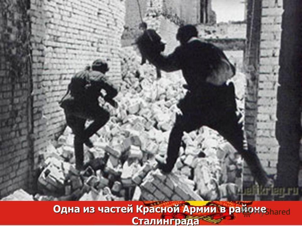 Одна из частей Красной Армии в районе Сталинграда