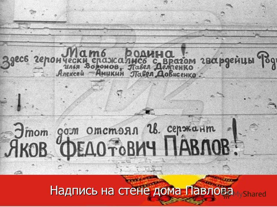 Надпись на стене дома Павлова Надпись на стене дома Павлова