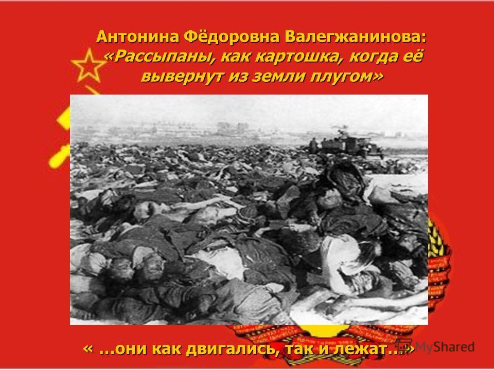 Антонина Фёдоровна Валегжанинова: «Рассыпаны, как картошка, когда её вывернут из земли плугом» « …они как двигались, так и лежат…»