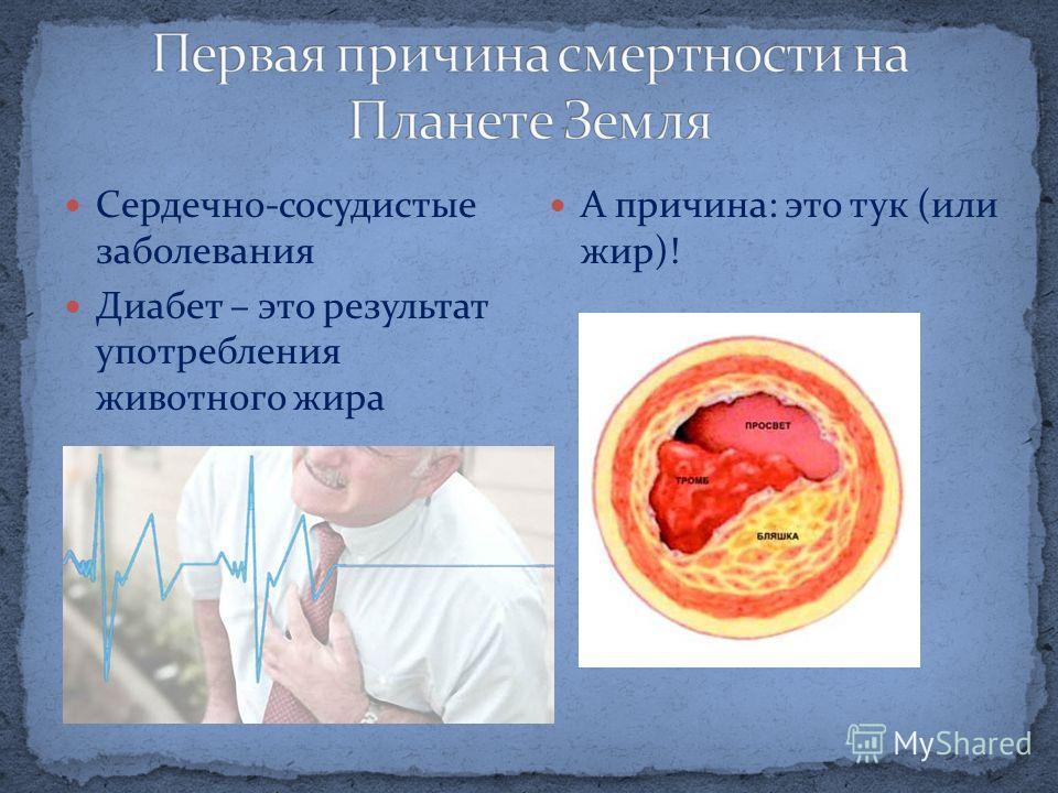 Сердечно-сосудистые заболевания Диабет – это результат употребления животного жира А причина: это тук (или жир)!