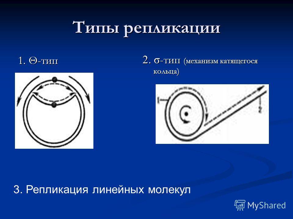 Типы репликации 1. Θ-тип 2. σ -тип (механизм катящегося кольца) 3. Репликация линейных молекул