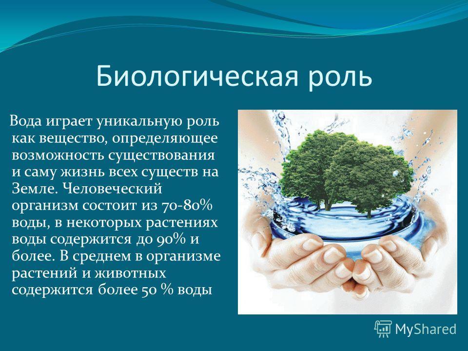 Биологическая роль Вода играет уникальную роль как вещество, определяющее возможность существования и саму жизнь всех существ на Земле. Человеческий организм состоит из 70-80% воды, в некоторых растениях воды содержится до 90% и более. В среднем в ор