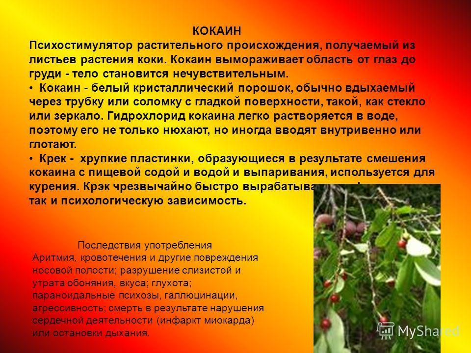 КОКАИН Психостимулятор растительного происхождения, получаемый из листьев растения коки. Кокаин вымораживает область от глаз до груди - тело становится нечувствительным. Кокаин - белый кристаллический порошок, обычно вдыхаемый через трубку или соломк