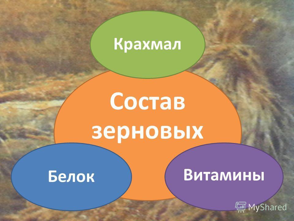Состав зерновых Крахмал Витамины Белок