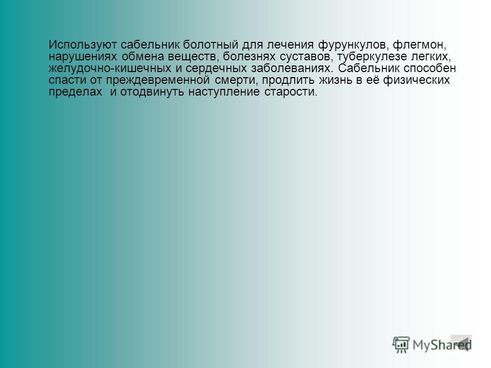 Сабельник болотный – (декоп), успешно борется со многими болезнями, в том числе считающимися неизлечимыми. Он помогает обновлять все ослабленные клетки организма, очищает его от вредных веществ и не оказывает никакого отрицательного влияния на здоров