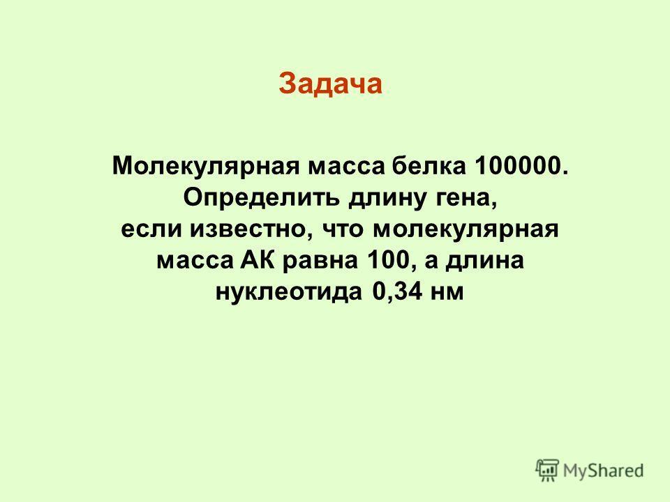 Молекулярная масса белка 100000. Определить длину гена, если известно, что молекулярная масса АК равна 100, а длина нуклеотида 0,34 нм Задача