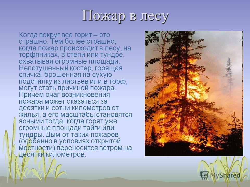 Пожар в лесу Когда вокруг все горит – это страшно. Тем более страшно, когда пожар происходит в лесу, на торфяниках, в степи или тундре, охватывая огромные площади. Непотушенный костер, горящая спичка, брошенная на сухую подстилку из листьев или в тор