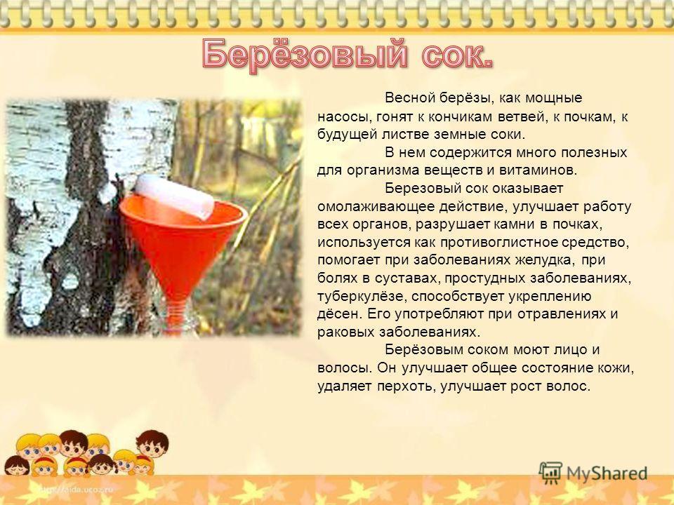 Стих про сок березовый сок