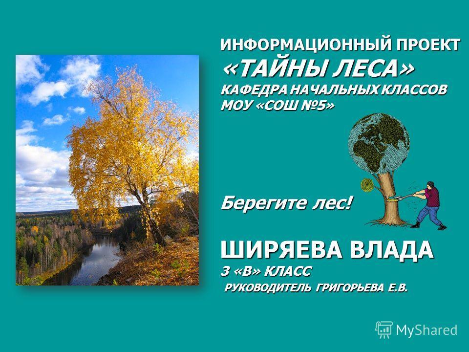 ИНФОРМАЦИОННЫЙ ПРОЕКТ «ТАЙНЫ ЛЕСА» КАФЕДРА НАЧАЛЬНЫХ КЛАССОВ МОУ «СОШ 5» Берегите лес! ШИРЯЕВА ВЛАДА 3 «В» КЛАСС РУКОВОДИТЕЛЬ ГРИГОРЬЕВА Е.В.