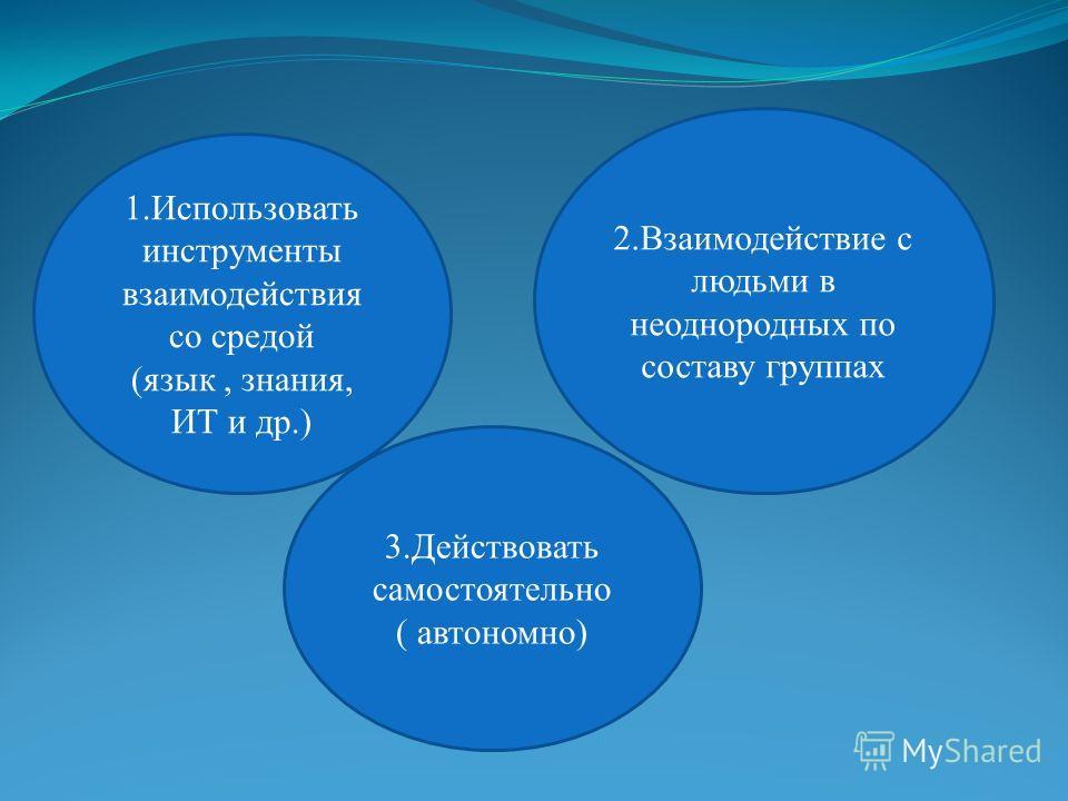 1.Использовать инструменты взаимодействия со средой (язык, знания, ИТ и др.) 2.Взаимодействие с людьми в неоднородных по составу группах 3.Действовать самостоятельно ( автономно)