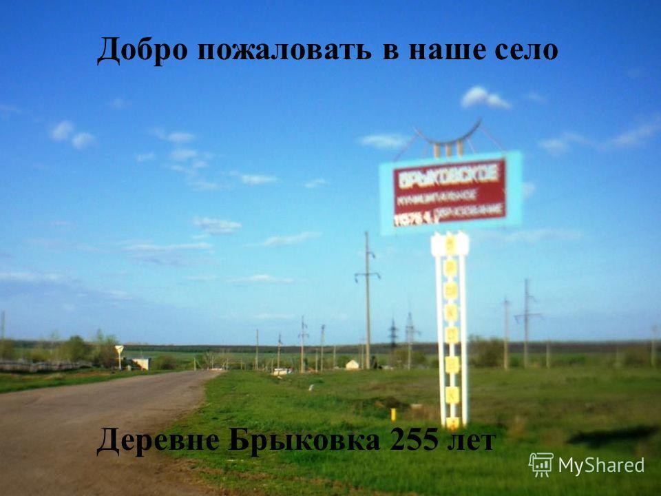 Добро пожаловать в наше село Деревне Брыковка 255 лет