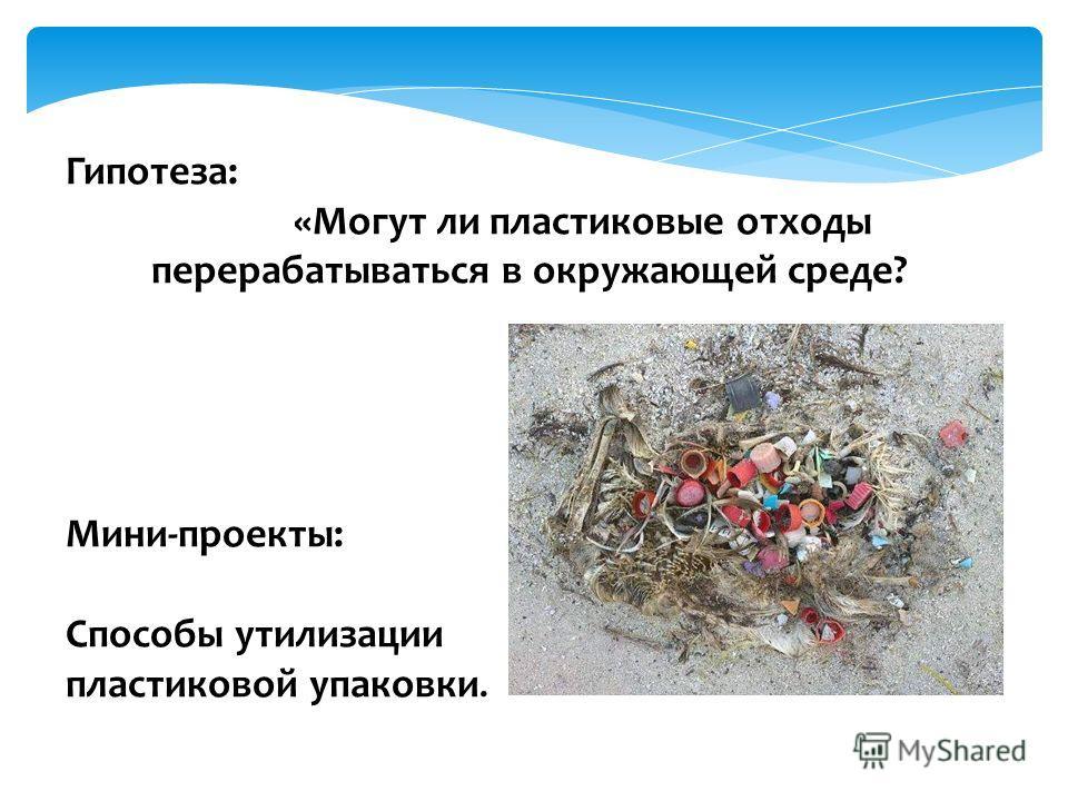 Гипотеза: «Могут ли пластиковые отходы перерабатываться в окружающей среде? Мини-проекты: Способы утилизации пластиковой упаковки.