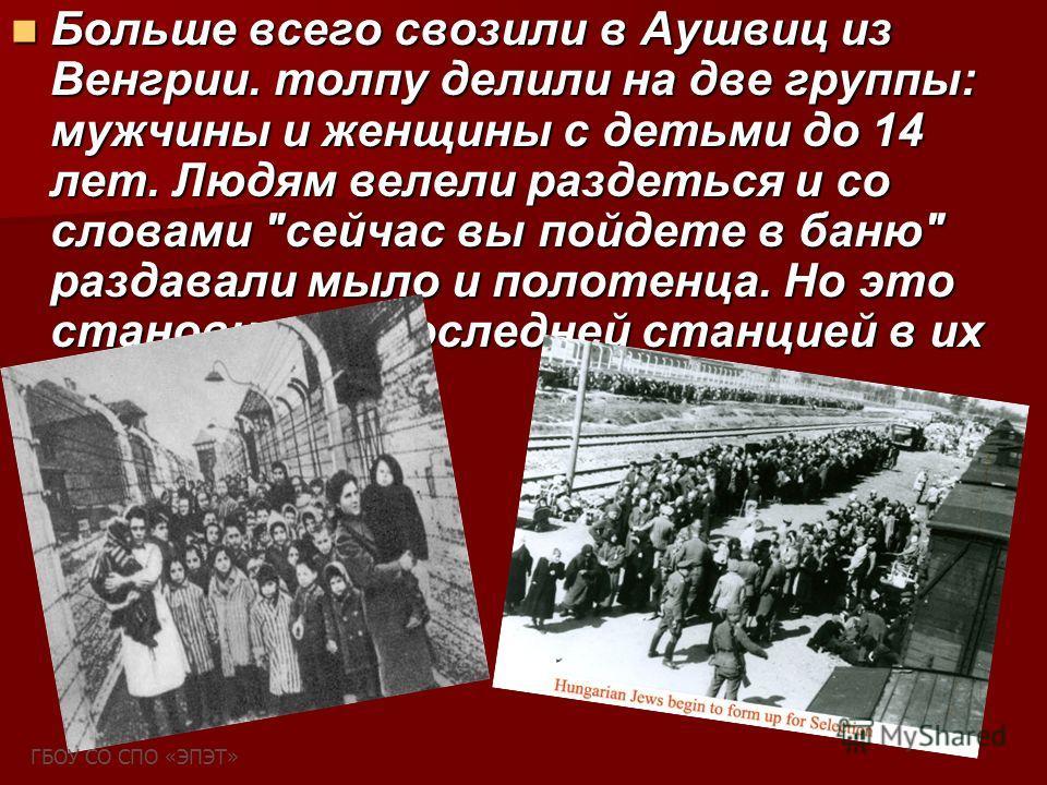 Больше всего свозили в Аушвиц из Венгрии. толпу делили на две группы: мужчины и женщины с детьми до 14 лет. Людям велели раздеться и со словами