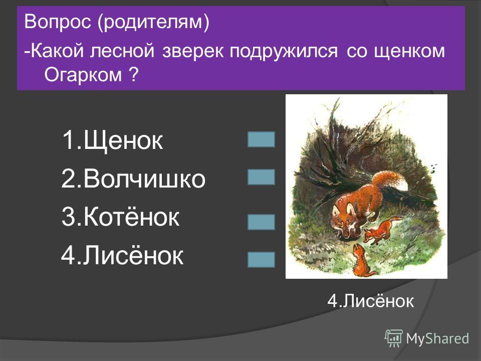 Вопрос (родителям) -Какой лесной зверек подружился со щенком Огарком ? 1.Щенок 2.Волчишко 3.Котёнок 4.Лисёнок