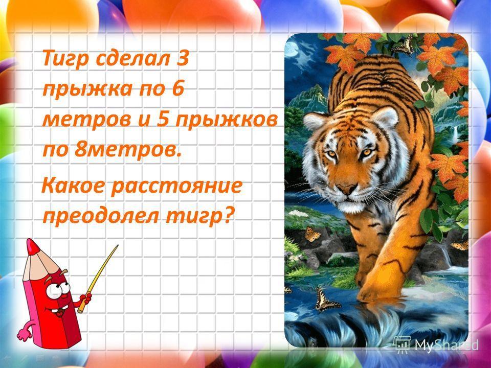 4 Тигр сделал 3 прыжка по 6 метров и 5 прыжков по 8метров. Какое расстояние преодолел тигр?