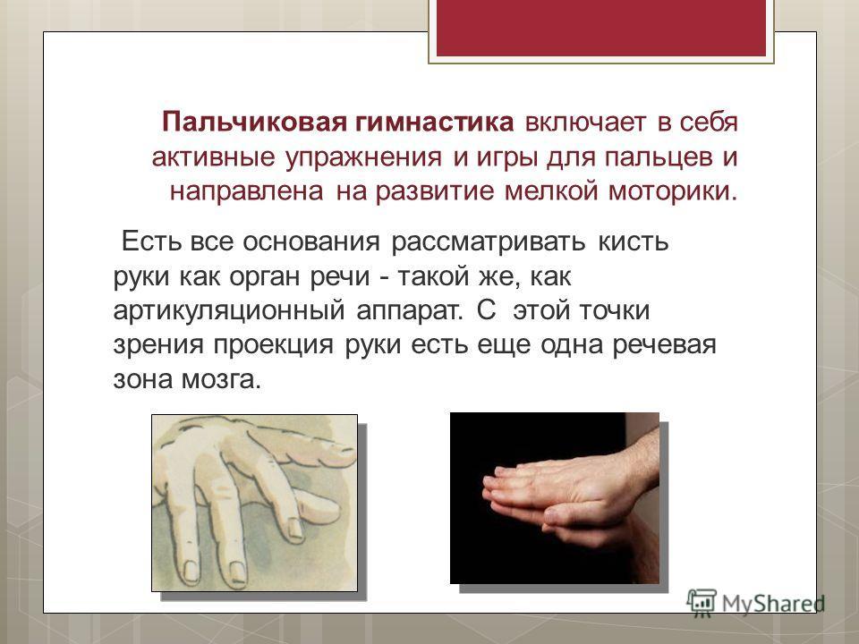 Есть все основания рассматривать кисть руки как орган речи - такой же, как артикуляционный аппарат. С этой точки зрения проекция руки есть еще одна речевая зона мозга. Пальчиковая гимнастика включает в себя активные упражнения и игры для пальцев и на