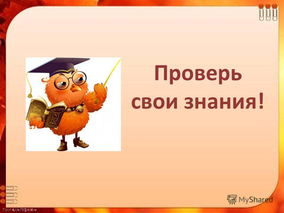 Проверь свои знания!
