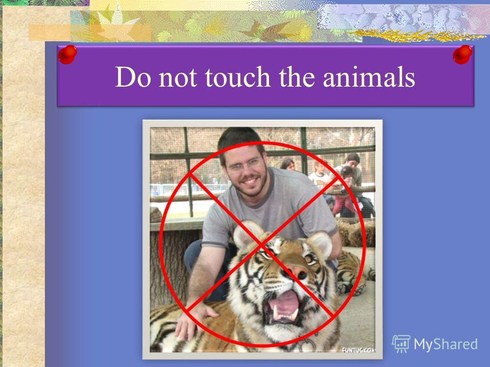 Do not touch the animals