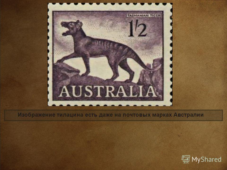 Изображение тилацина есть даже на почтовых марках Австралии