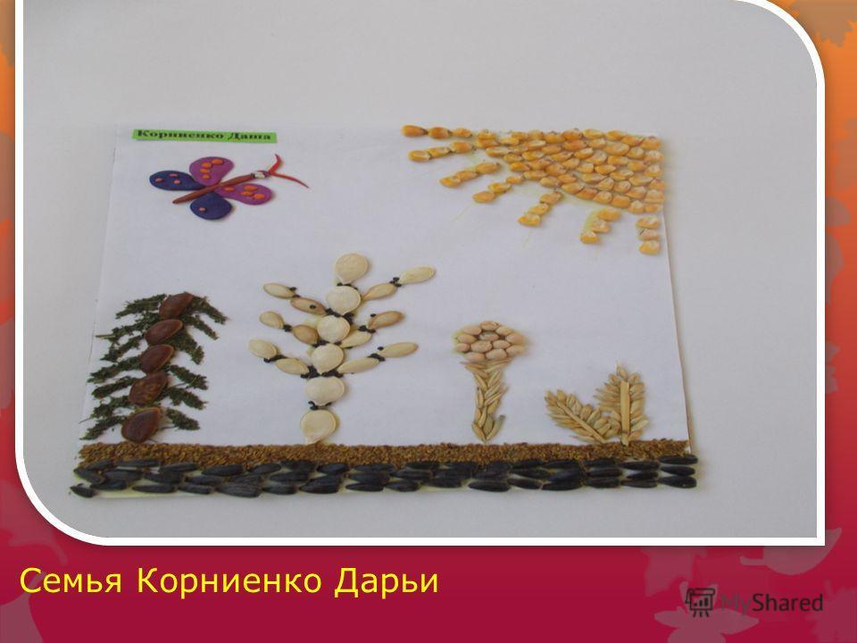 Семья Корниенко Дарьи