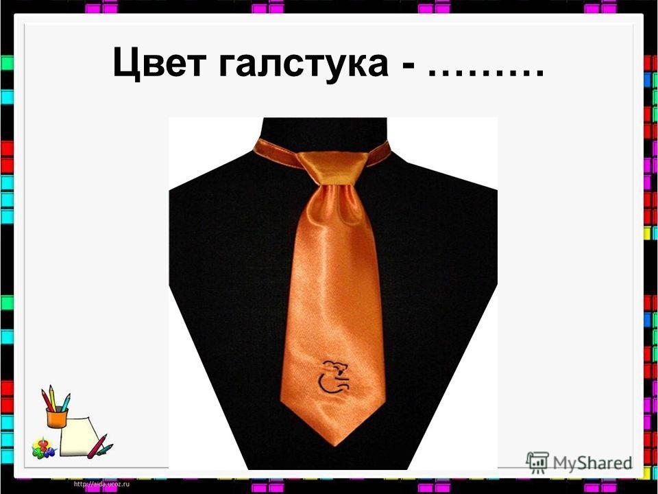 Цвет галстука - ………