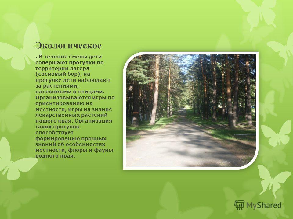 Экологическое. В течение смены дети совершают прогулки по территории лагеря (сосновый бор), на прогулке дети наблюдают за растениями, насекомыми и птицами. Организовываются игры по ориентированию на местности, игры на знание лекарственных растений на