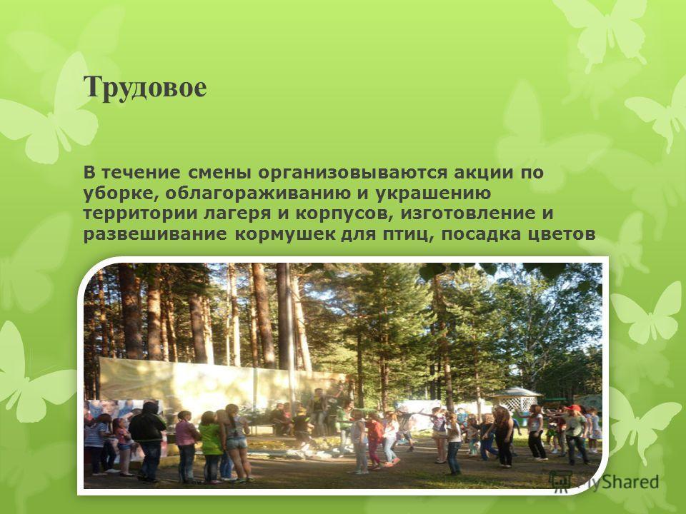 Трудовое В течение смены организовываются акции по уборке, облагораживанию и украшению территории лагеря и корпусов, изготовление и развешивание кормушек для птиц, посадка цветов