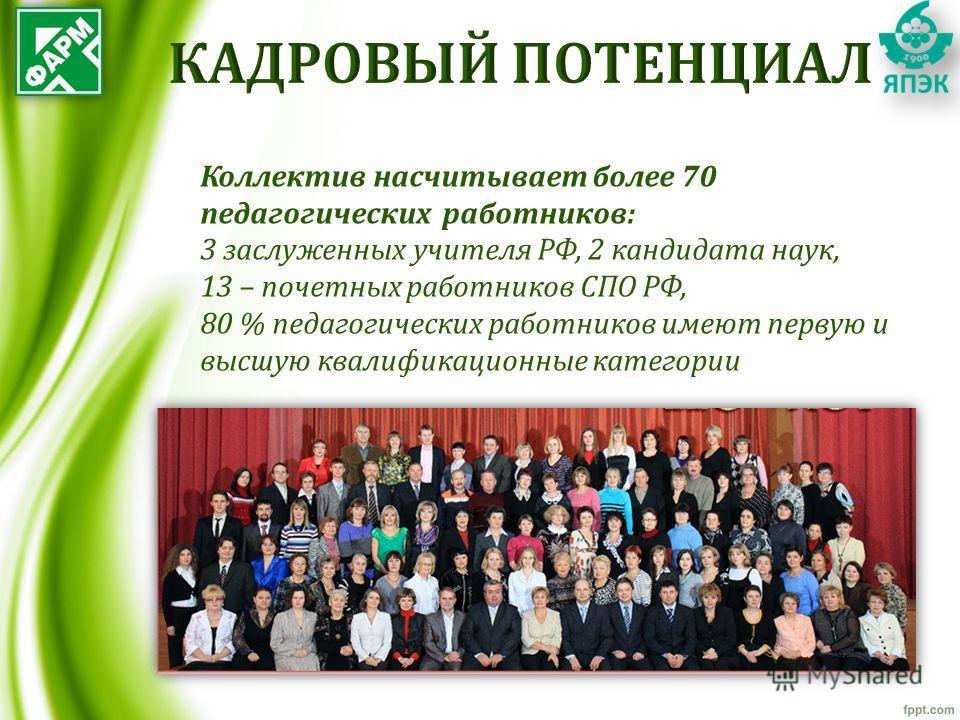 Коллектив насчитывает более 70 педагогических работников: 3 заслуженных учителя РФ, 2 кандидата наук, 13 – почетных работников СПО РФ, 80 % педагогических работников имеют первую и высшую квалификационные категории