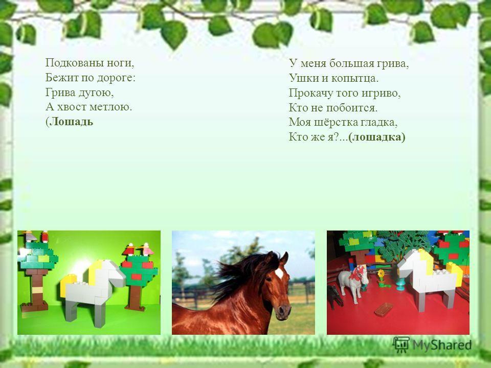 У меня большая грива, Ушки и копытца. Прокачу того игриво, Кто не побоится. Моя шёрстка гладка, Кто же я?...(лошадка) Подкованы ноги, Бежит по дороге: Грива дугою, А хвост метлою. (Лошадь
