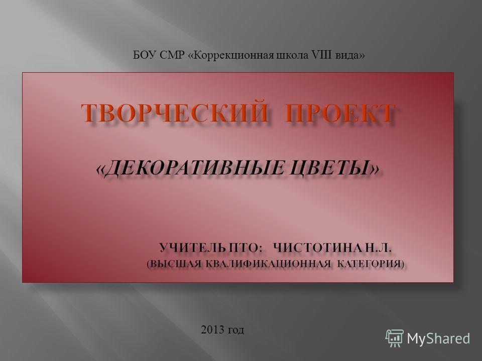 БОУ СМР « Коррекционная школа VIII вида » 2013 год