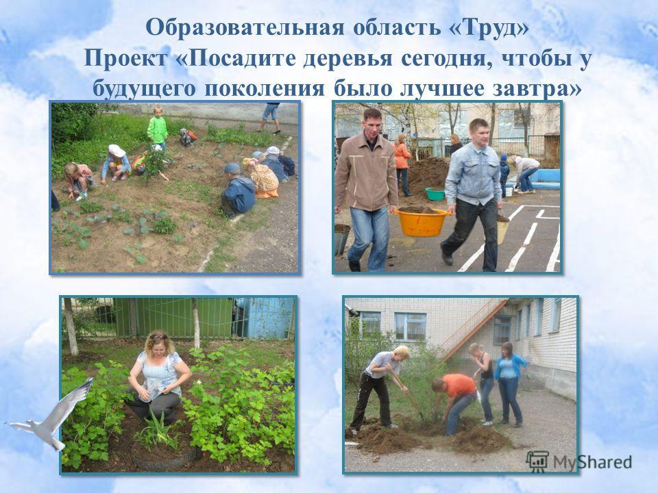 Образовательная область «Труд» Проект «Посадите деревья сегодня, чтобы у будущего поколения было лучшее завтра»