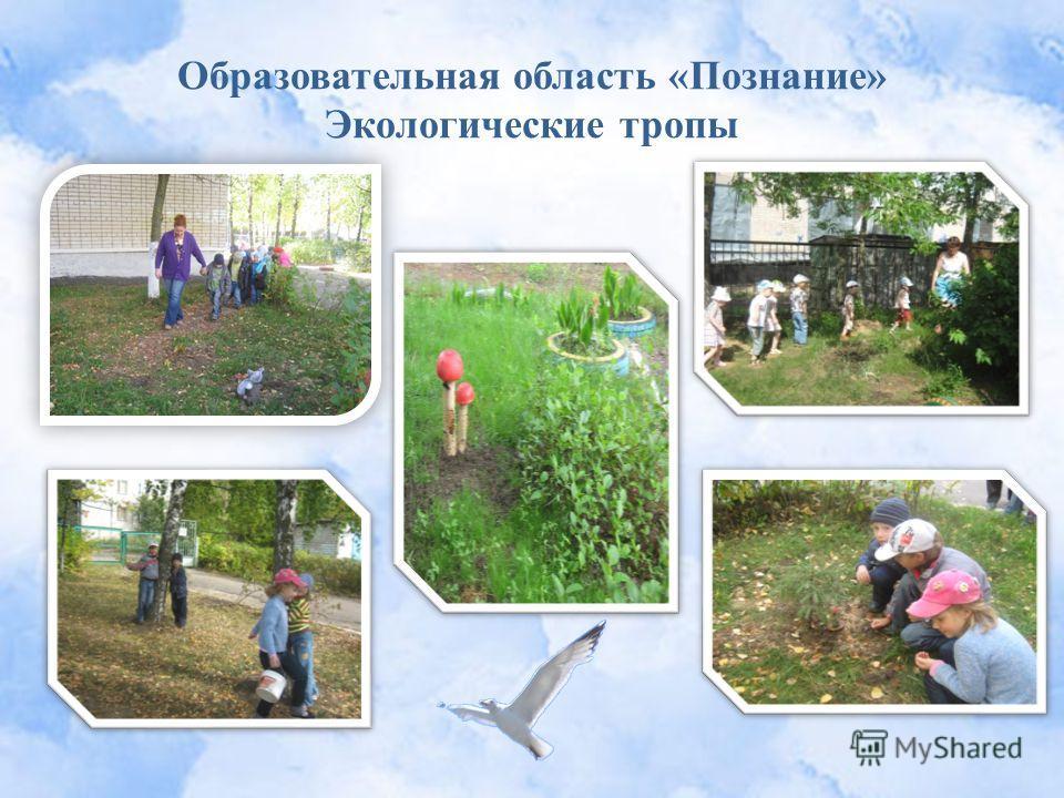 Образовательная область «Познание» Экологические тропы