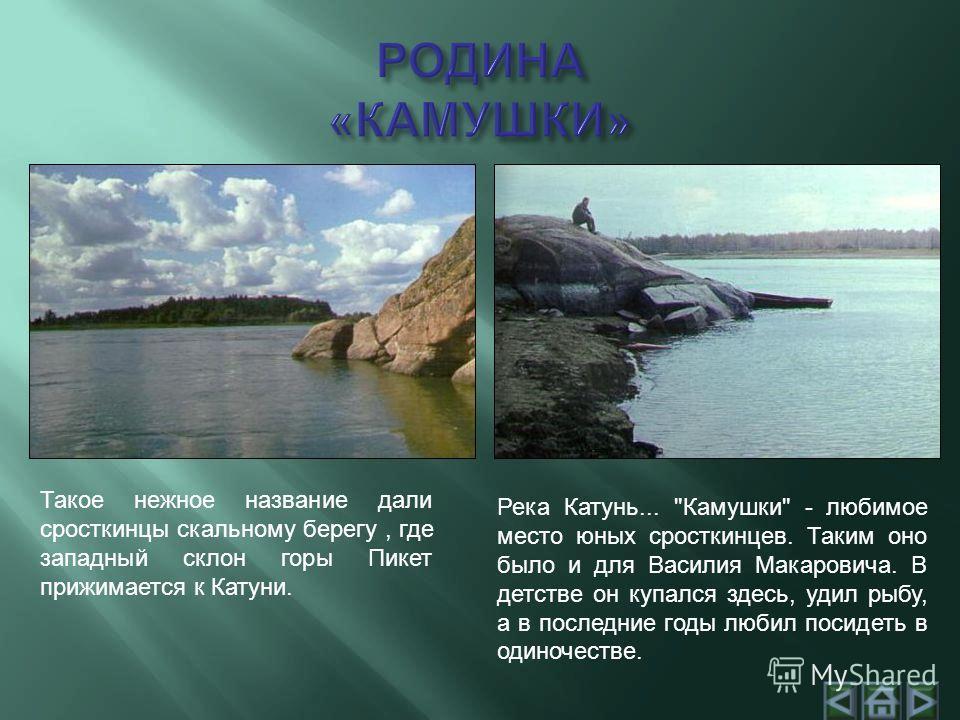 Такое нежное название дали сросткинцы скальному берегу, где западный склон горы Пикет прижимается к Катуни. Река Катунь...