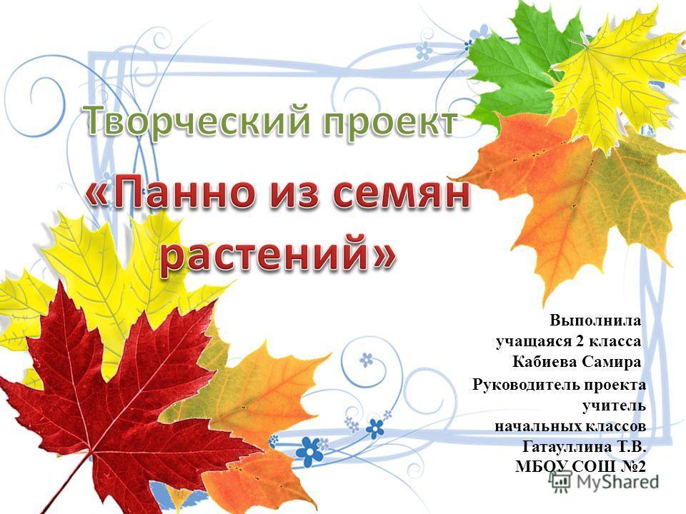 Выполнила учащаяся 2 класса Кабиева Самира Руководитель проекта учитель начальных классов Гатауллина Т.В. МБОУ СОШ 2