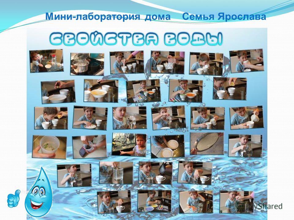 Мини-лаборатория дома Семья Ярослава