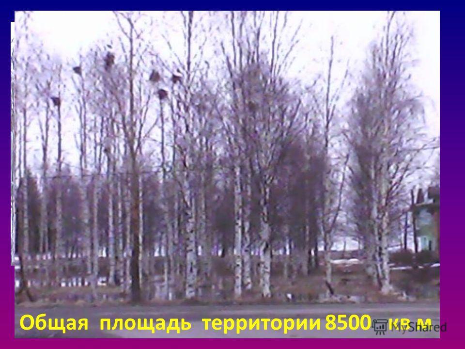 Здесь будет парк Общая площадь территории 8500 кв м