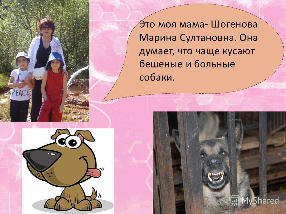 Это моя мама- Шогенова Марина Султановна. Она думает, что чаще кусают бешеные и больные собаки.