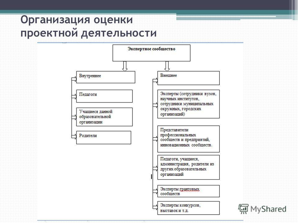 Организация оценки проектной деятельности
